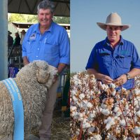 Natural Fibre Leaders:  There's something in the water at Dirranbandi